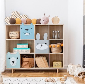 Toy Storage: Organize and Declutter Stuffed Animals, LEGOs, dolls and more!